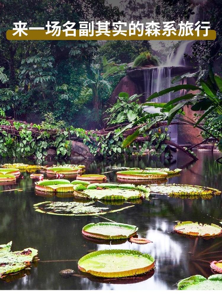 厦门园林万石植物园